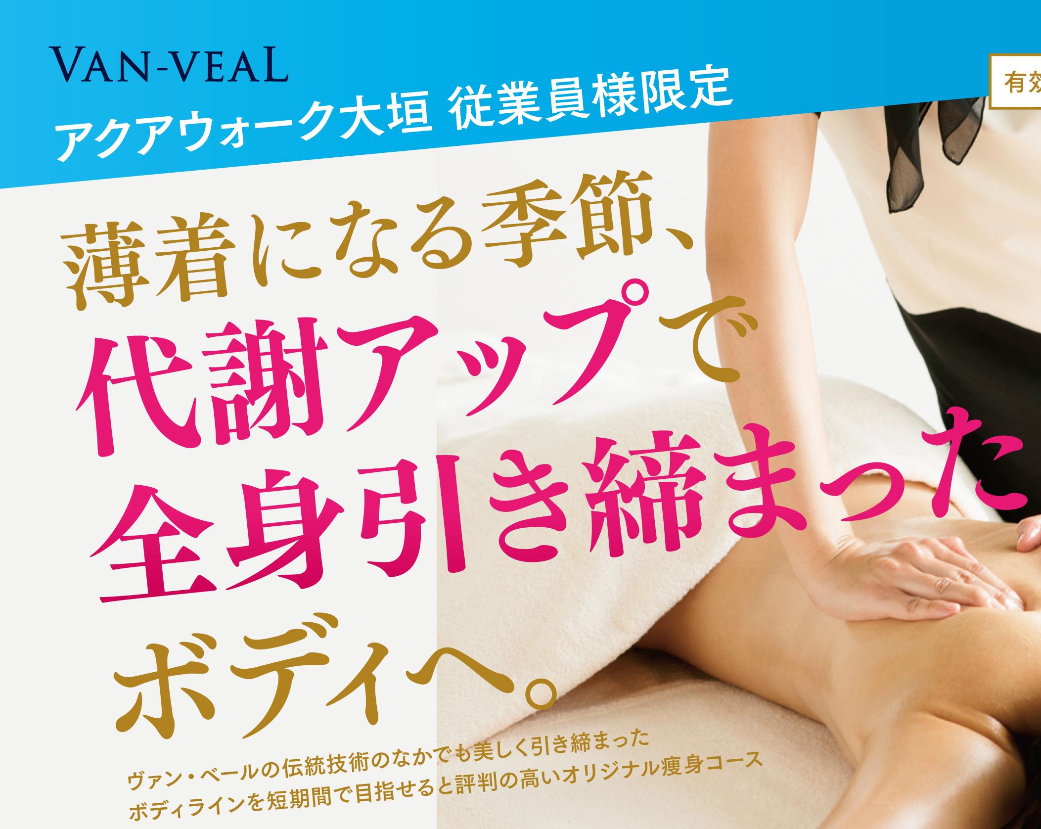 VAN-VEAL 大垣店チラシ