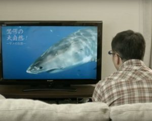 歯科・矯正歯科アールクリニック様TVCM(インプラント_シャーク篇)